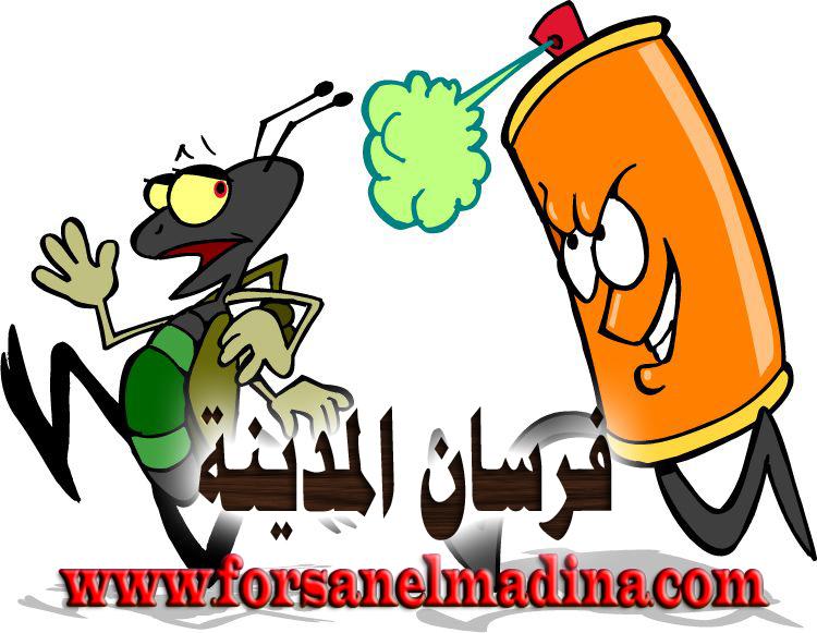 شركة مكافحة حشرات بالمدينة المنورة 0596970555