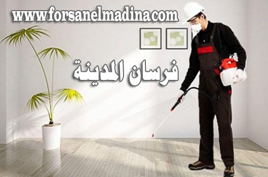شركة رش مبيدات بالمدينة المنورة 0596970555