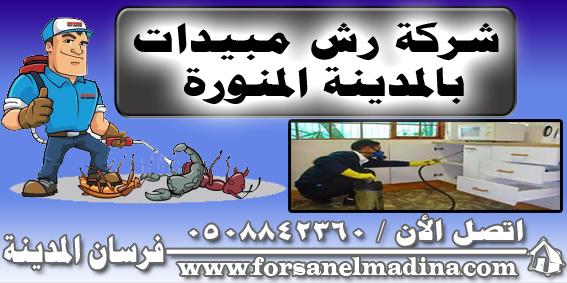 شركة رش مبيدات بالمدينة المنورة 0508842360